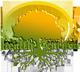 gyrh-peykoy Logo